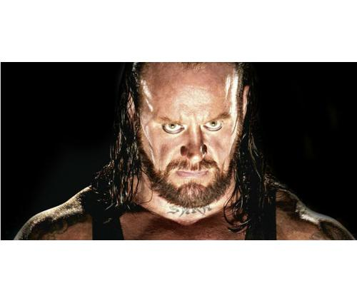 how much does Undertaker earn