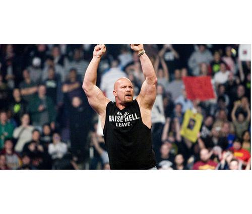how much does steve austin earn