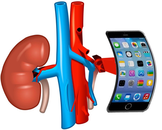 chinese men sell kidney to buy iphone