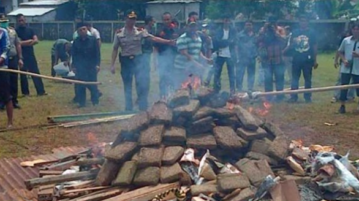 Indonesian Police Burn 3.3 Tons Of Weed, Entire City Gets High