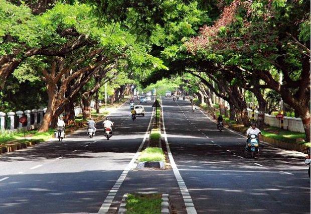 beautiful roads of chandigarh