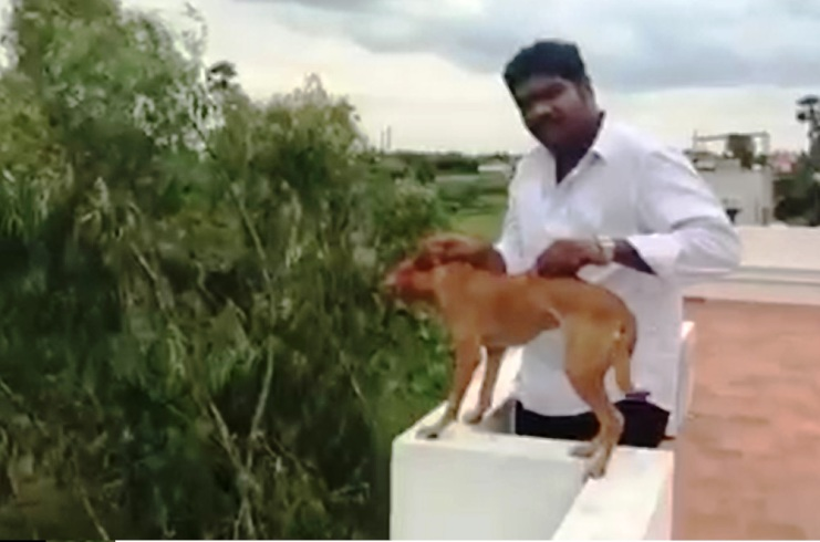 This Man Threw A Dog Off A Terrace And Made A video, Help Us Catch This Mad Guy