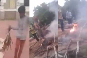 Group Of Hyderabadi Boys Burnt 3 Pupies Alive , What Is Wrong With Humanity ?
