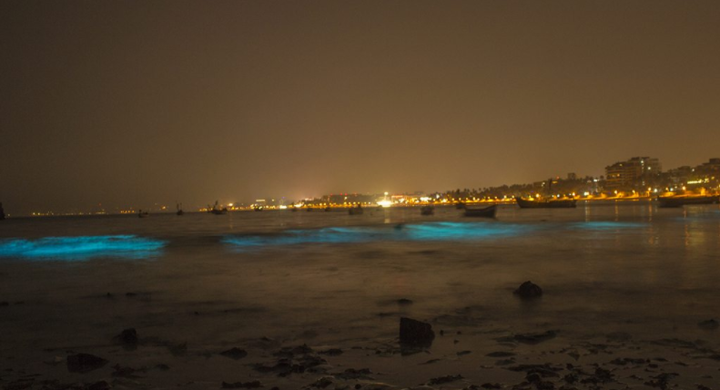 Once Again Mumbai's Juhu Beach Is Glowing Fluorescent In The Dark & It Looks Stunning