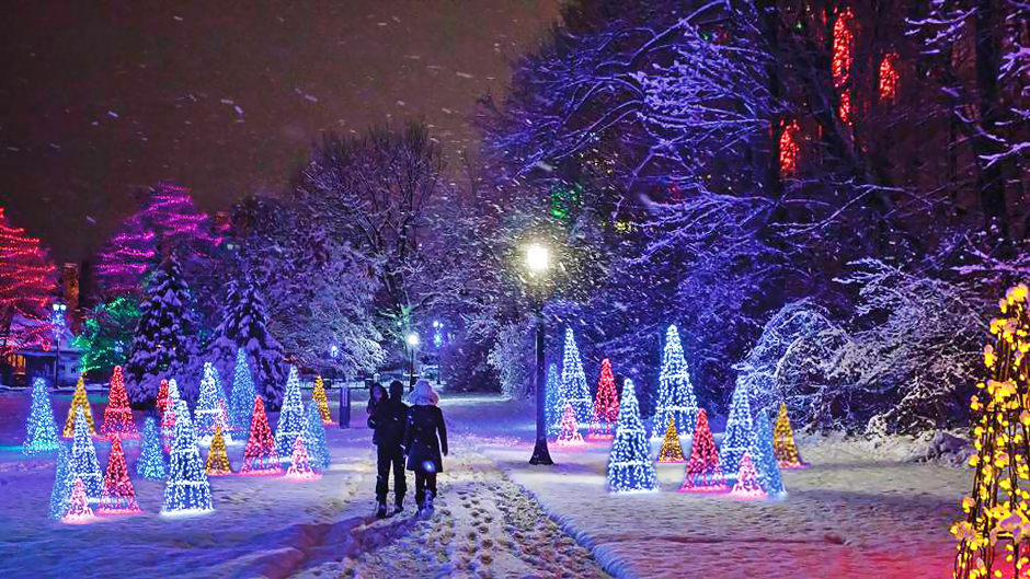 Niagara Falls Will Turn Into A Dreamy Winter Wonderland This Holiday Season