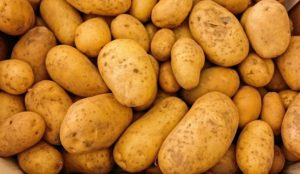 SECTION 22 OF THE MARKETING OF POTATOES ACT 1946