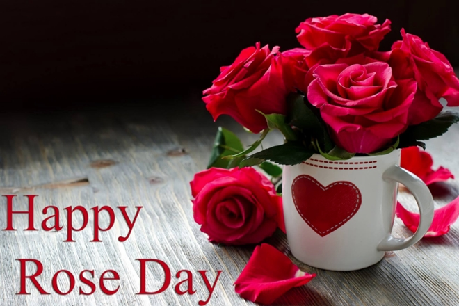 Happy Rose Day Quotes Wishes And Greetings