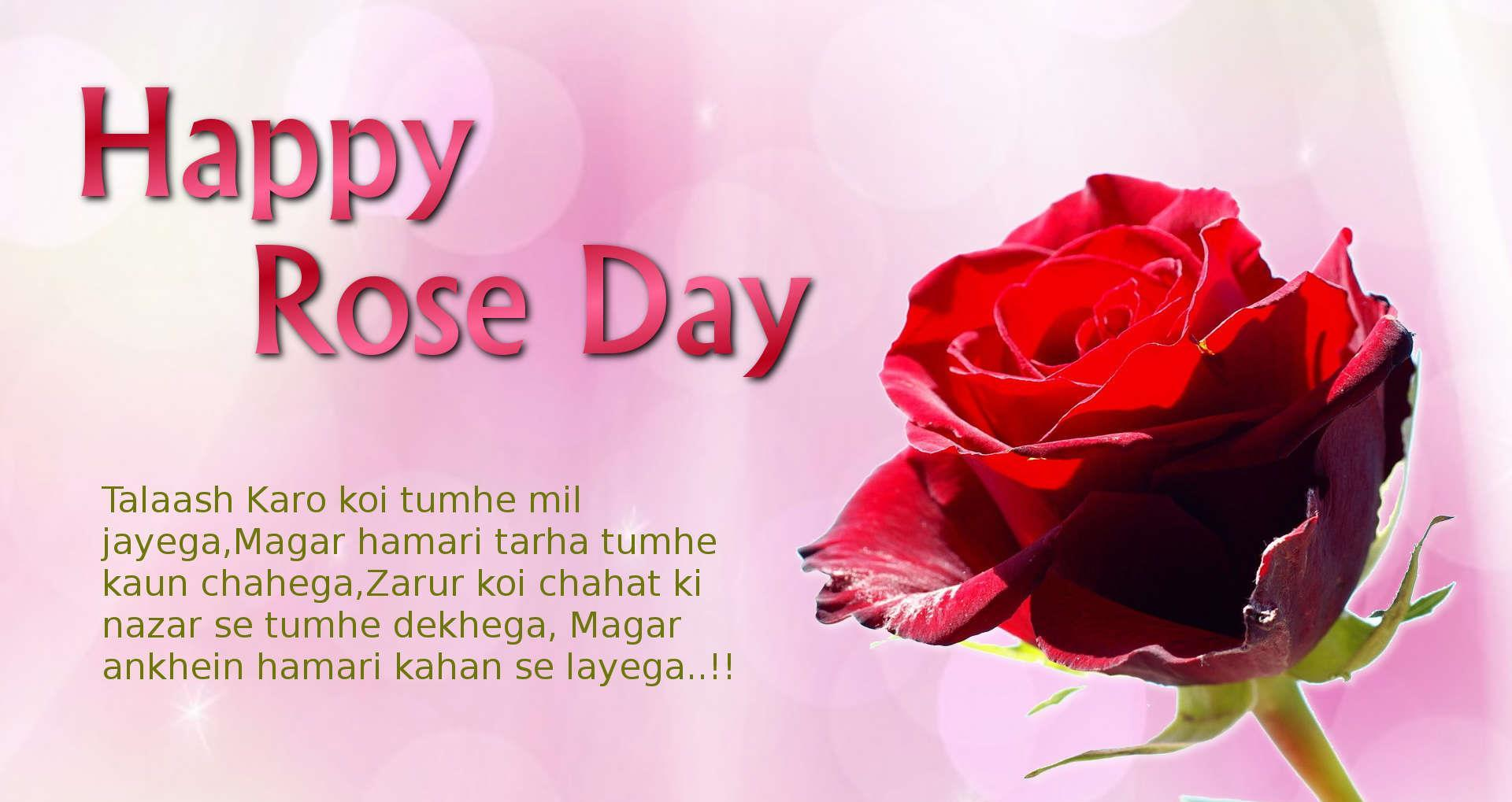 These Rose day images are so lovely and cute and you can even share these with your friends and family as love has no boundaries.