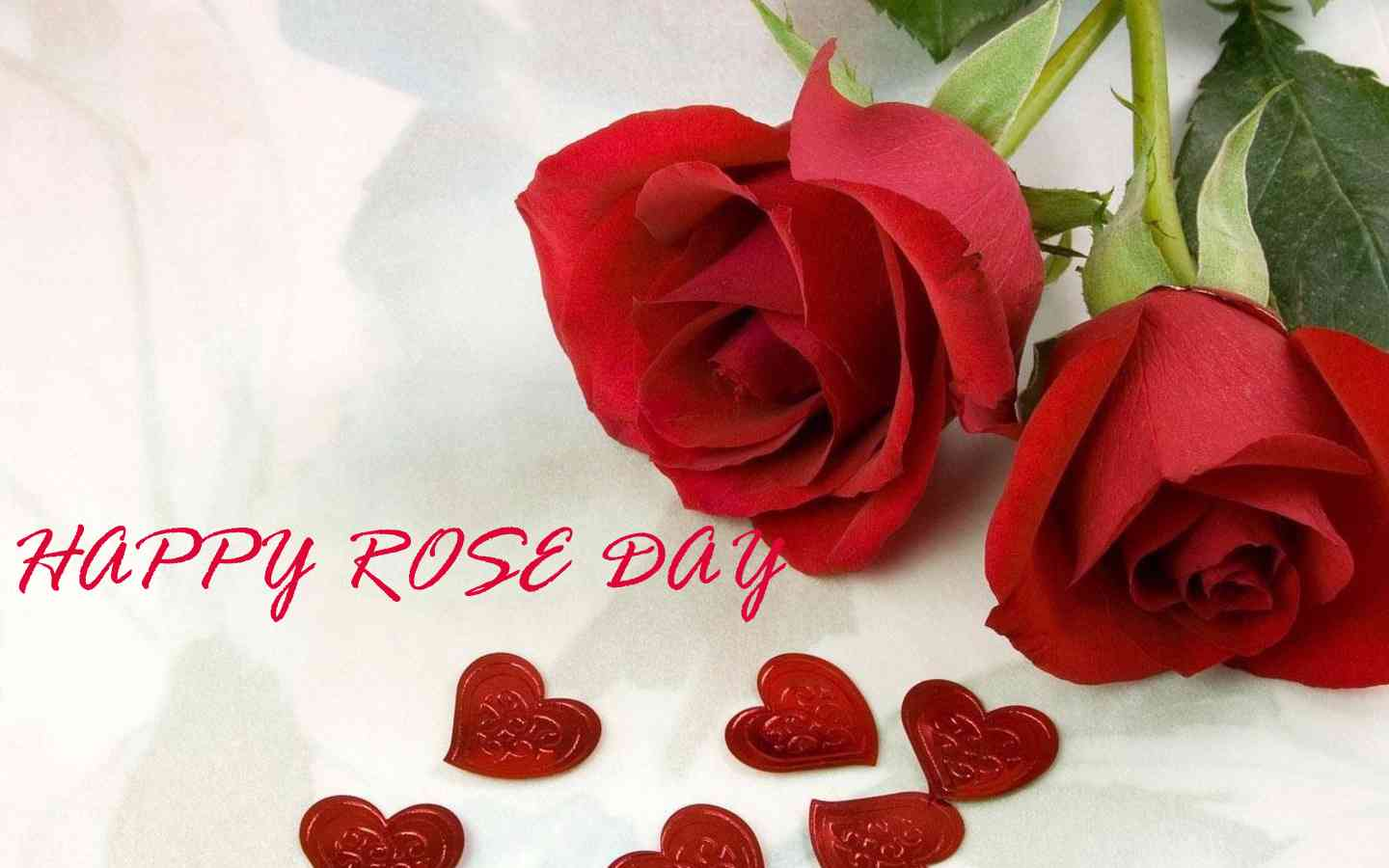 Happy Rose Day Images Pictures Wallpapers In Hd Dontgetserious