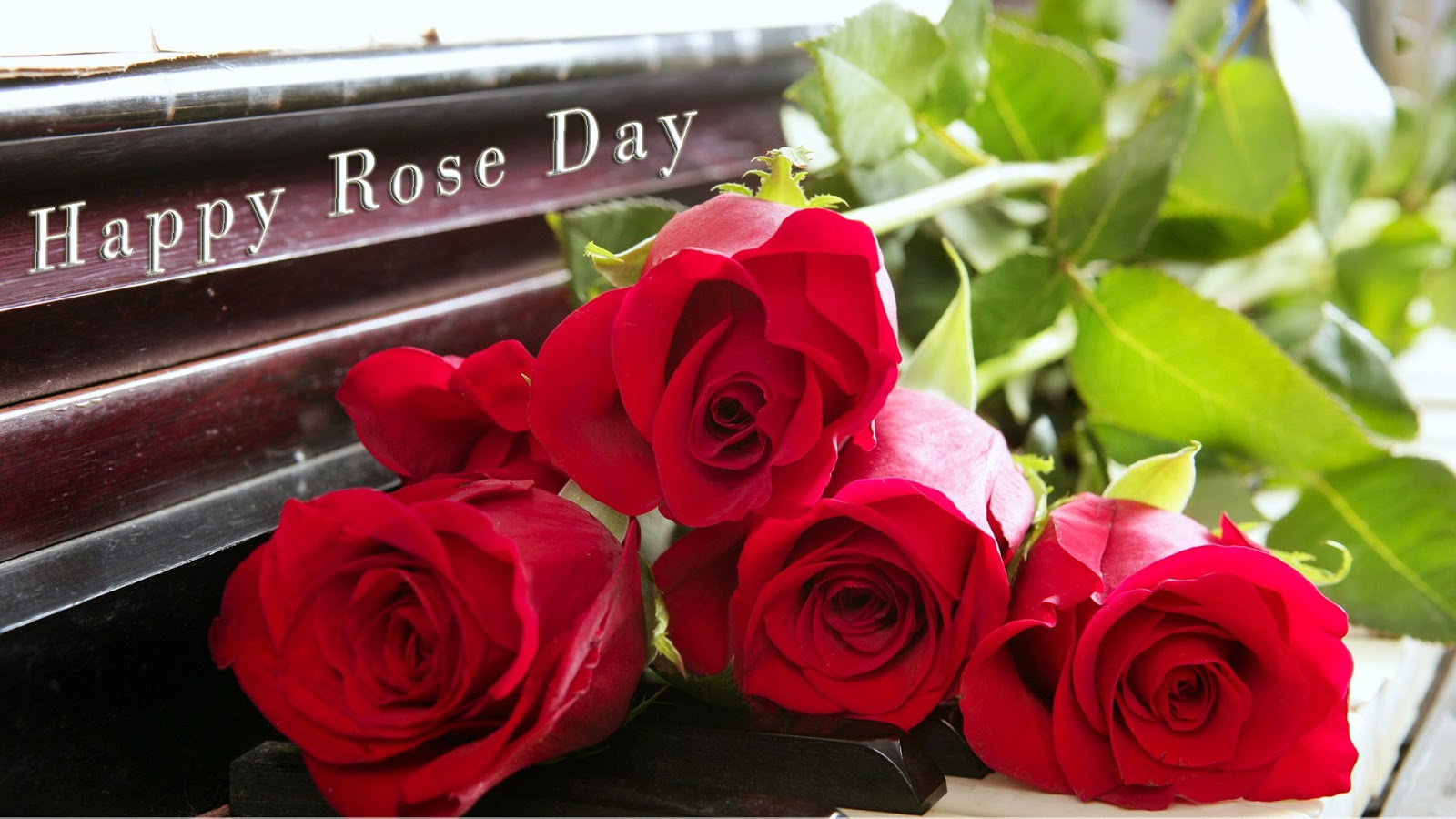 Happy Rose Day Images Pictures Wallpapers 2020 Hd