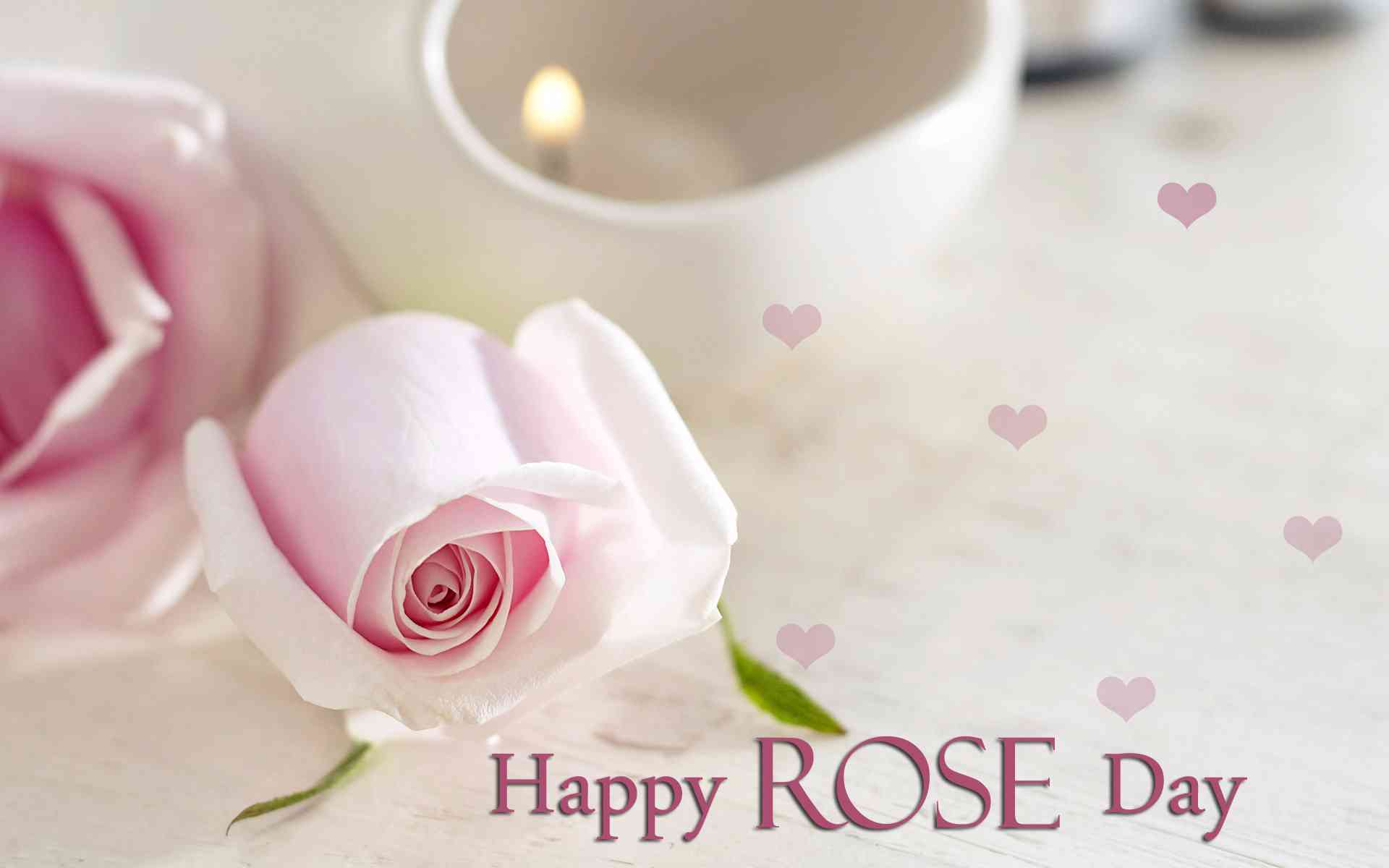 images of rose day