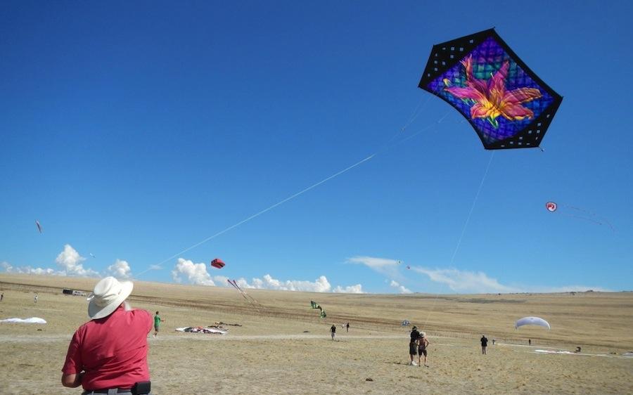 kites makar sankranti images