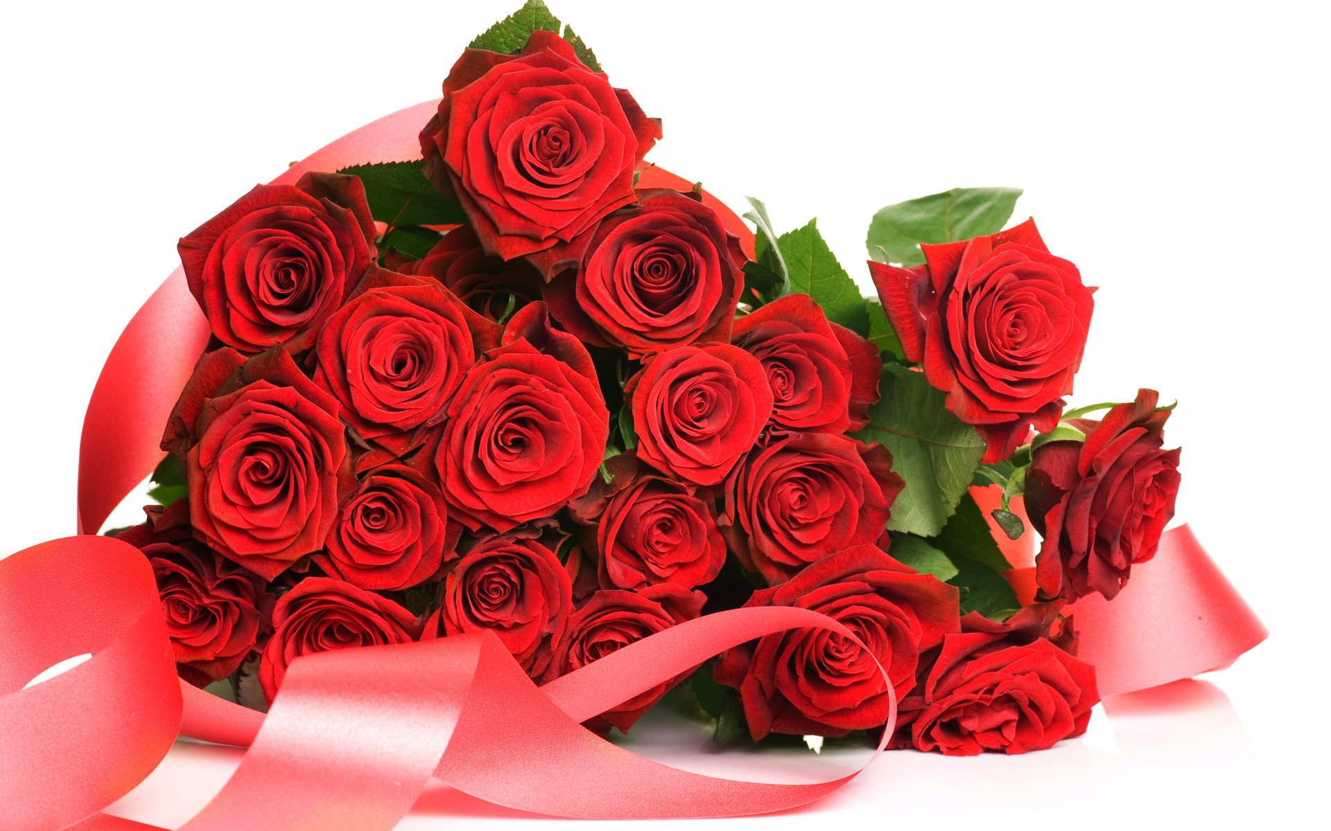 red roses wallpaper for rose day