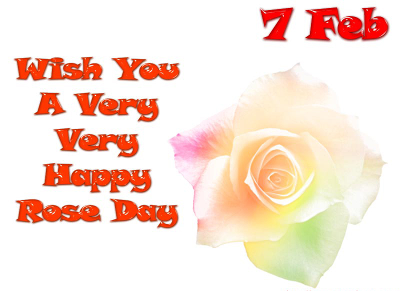 rose day pictures 2018