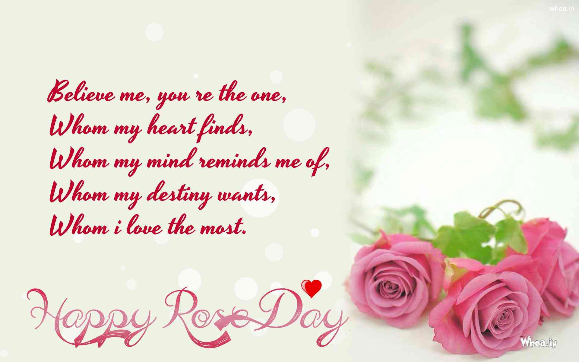 rose day wallpapers in high definition