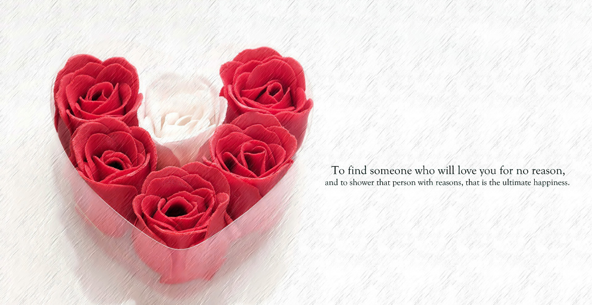 rose day wallpapers new