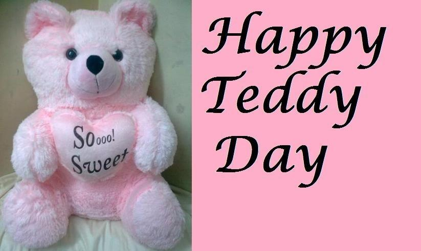 teddy pic download