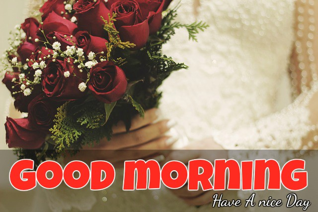 have happy good morning messages sms