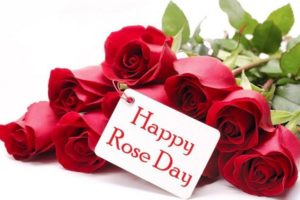 happy rose day images & gif