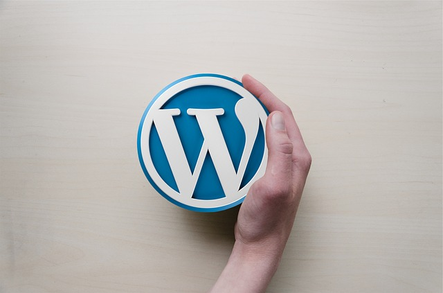 Create WordPress plugins to make money online