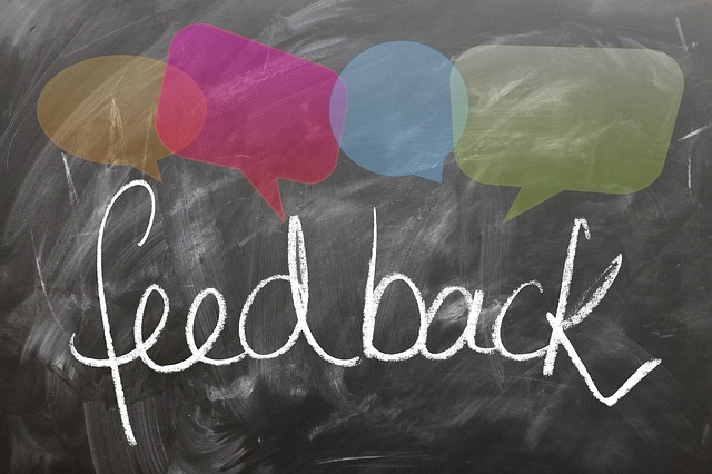 make money online by giving feedback