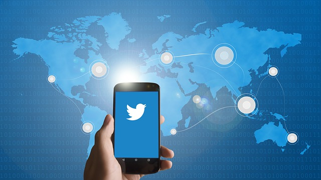 paide tweets to make money online