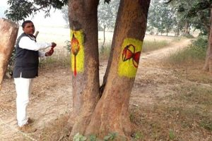 Man in UP Paints Images of Gods On Trees To Prevent People From Cutting Them!