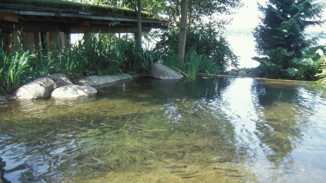 artificial stream in bill gates house