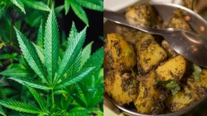UP Family Consumes 'Ganja' Sabzi thinking of it as Methi | All Hospitalised