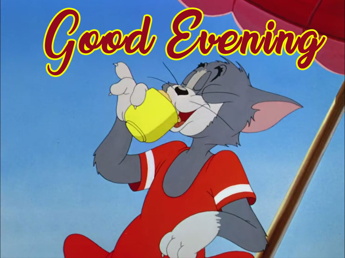 funny tom and jerry good evening memes