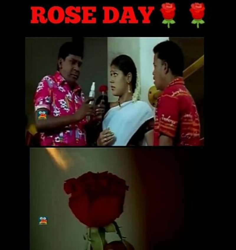 happy funny rose day memes