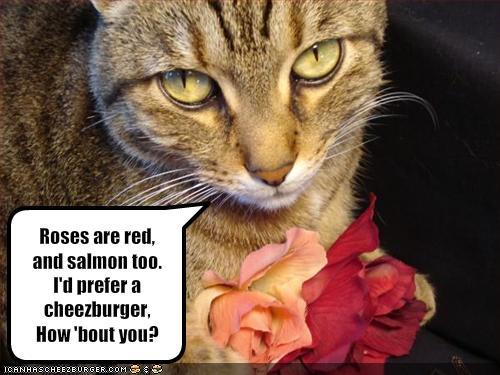 red rose meme