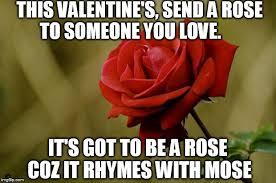 rose day memes download free