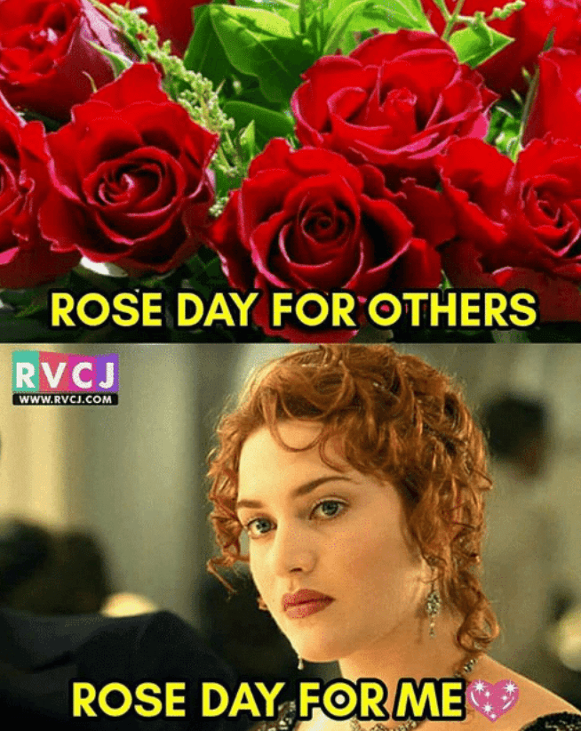 rose day memes funny