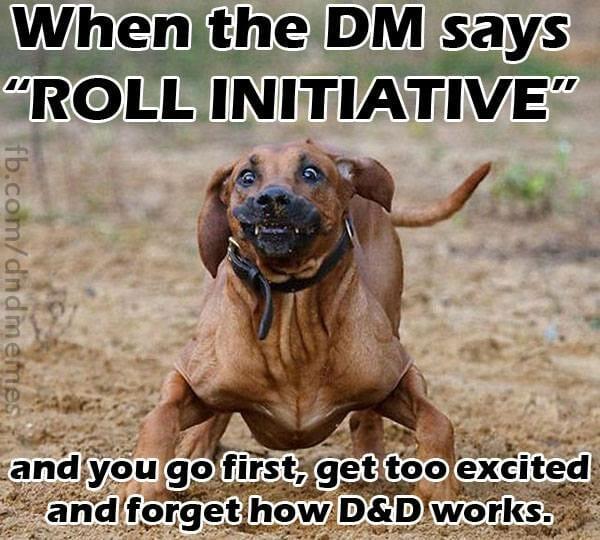 DnD Memes Roll Initiative