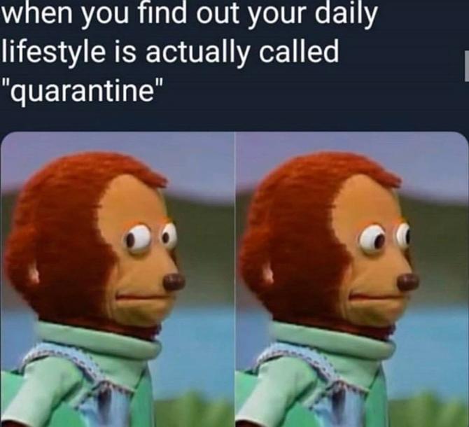 Social Distancing quarantine Memes