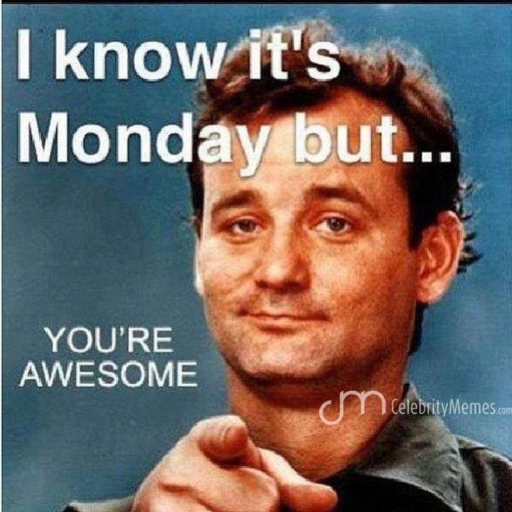 monday you are awesome meme