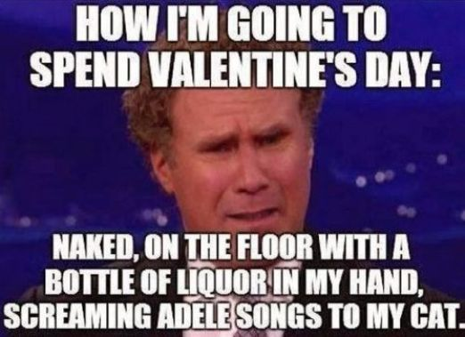 valentines day memes single