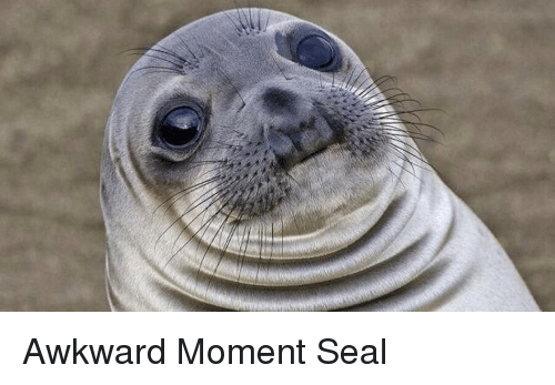 Awkward Moment Seal meme