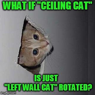 Ceiling Cat meme