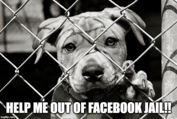 funniest facebook jail memes