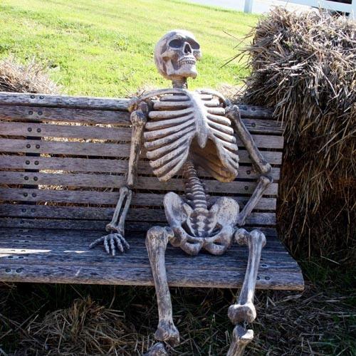 waiting skeleton meme template