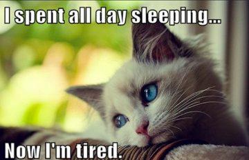 Tired Memes