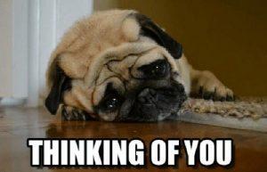 Thinking of You Memes