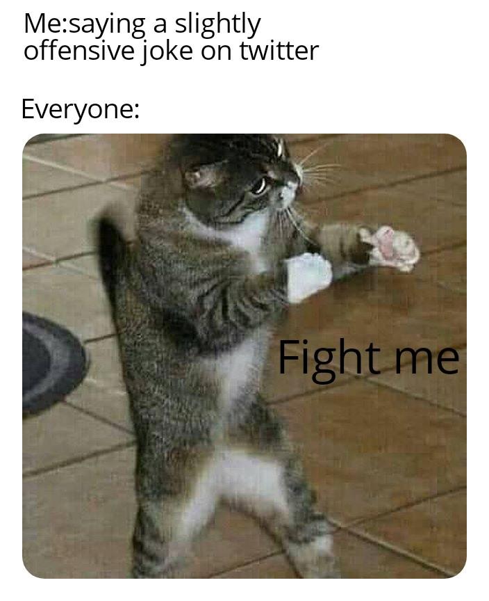 fighting memes